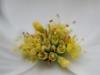 Dogwood Flower Cluster