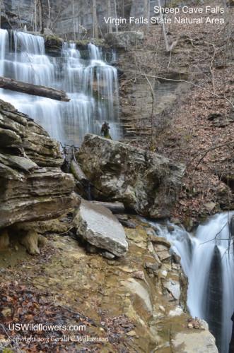 Upper Sheep Cave Falls