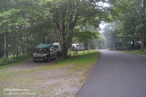 Grayson Highlands State Park Campground